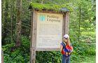 Der Weg zur Quelle der Pießling ist auch für kleine Wanderer spielend zu schaffen.