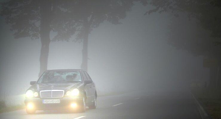 Im vergangenen Jahr kam es in Deutschland zu 386 nebelbedingten Unfällen mit Personenschaden.