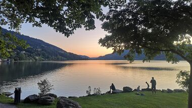 Alpsee Camp