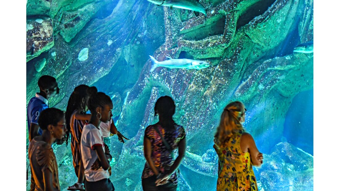 Aquarium von La Rochelle