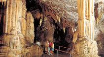 Archiv: Postojna, Höhle