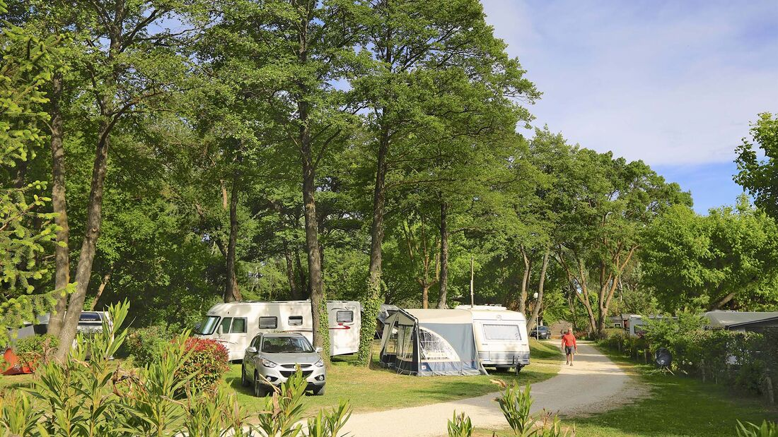 Camping La Couteliere Vaucluse - Gelände