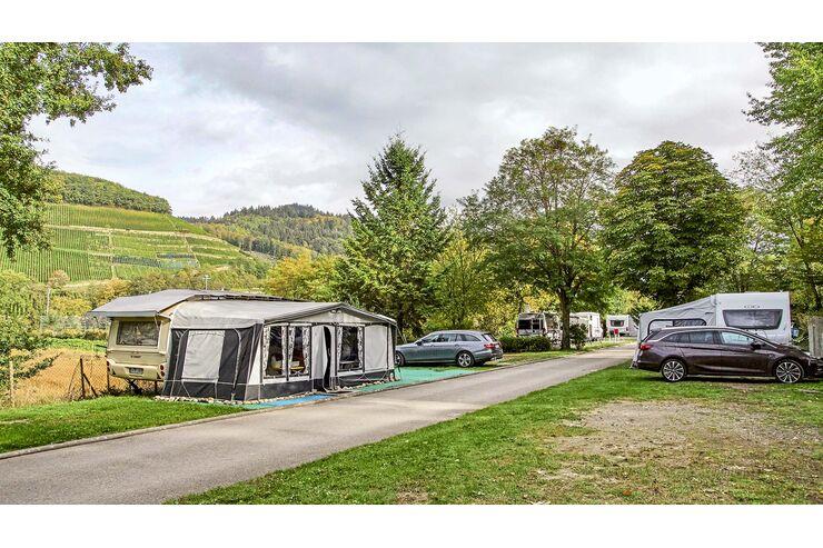 Camping Sulzbachtal im Markgräflerland: Paradies inmitten von Weinbergen