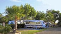 Campingplatz des Monats: La Ballena Alegre, News
