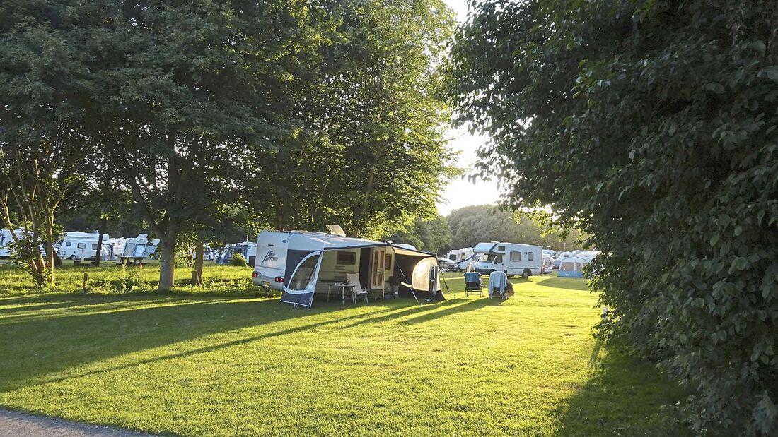 Campsite Broadhembury Holiday Park