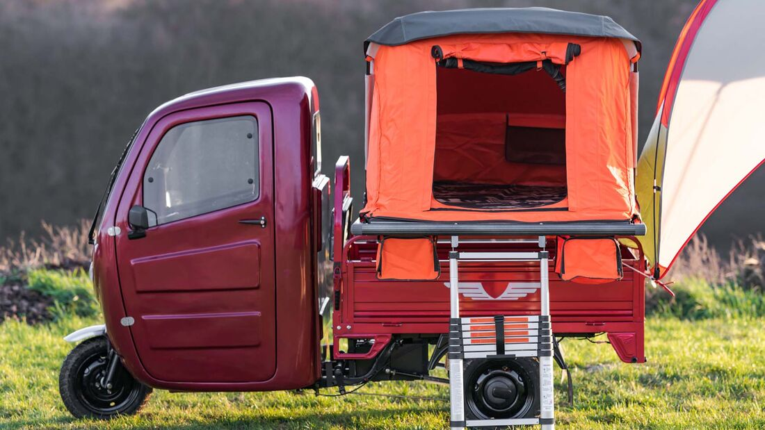 Elektrofrosch Pro Camping (2020)