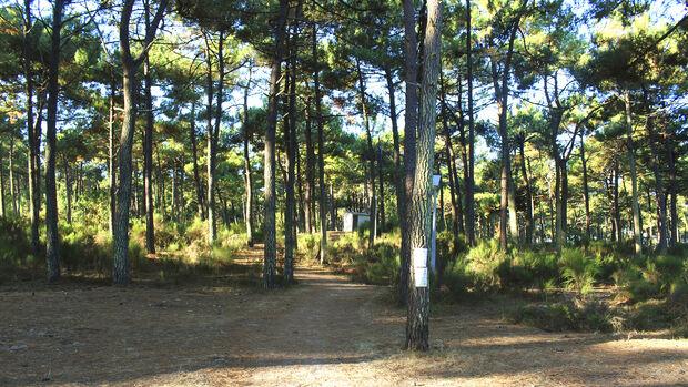 FKK-Camping
