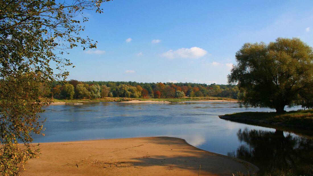 Herbstziel: Biosphärenreservat Mittlere Elbe