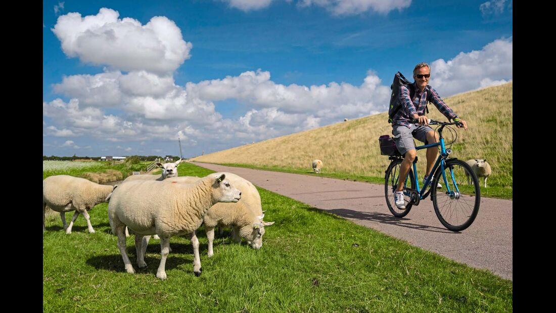 Holland ist  ideal zum Radfahren.