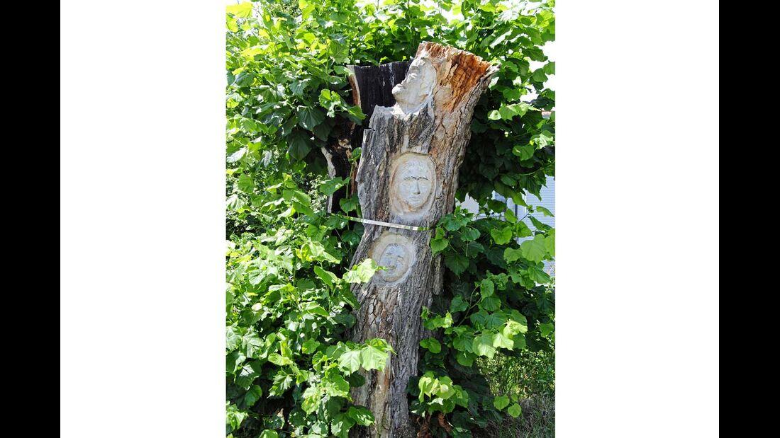Kunst am Baum in Mühlhausen