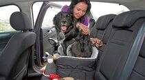 Mit Hilfe von Schnallen wird der Autositz für Hunde an der Rückbank angebracht.
