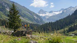 Mountaincartstrecke am Wildkogel