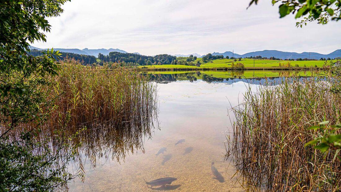 Oberbayrische Seen