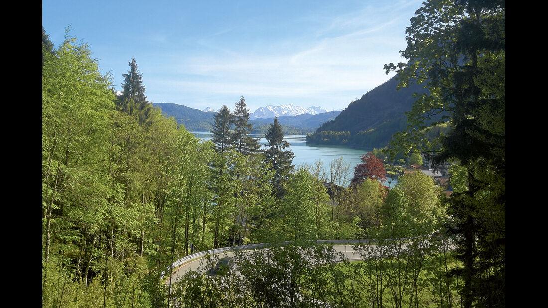Ratgeber: Camping-Blogs