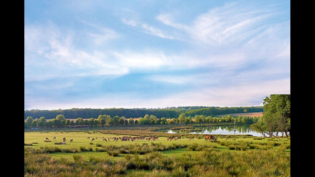 Reise-Service: Ausflugsziele, Naturpark