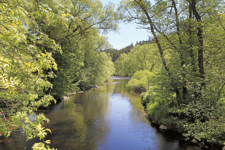 Reise-Tipp: Bayerischer Wald