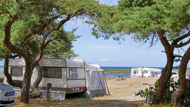 Sanddobberne Camping