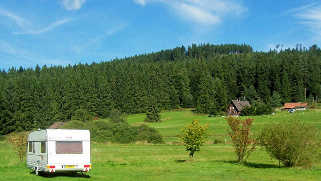 Schwarzwald-Camping Herrenwies erhält die Ecocamping-Auszeichnung