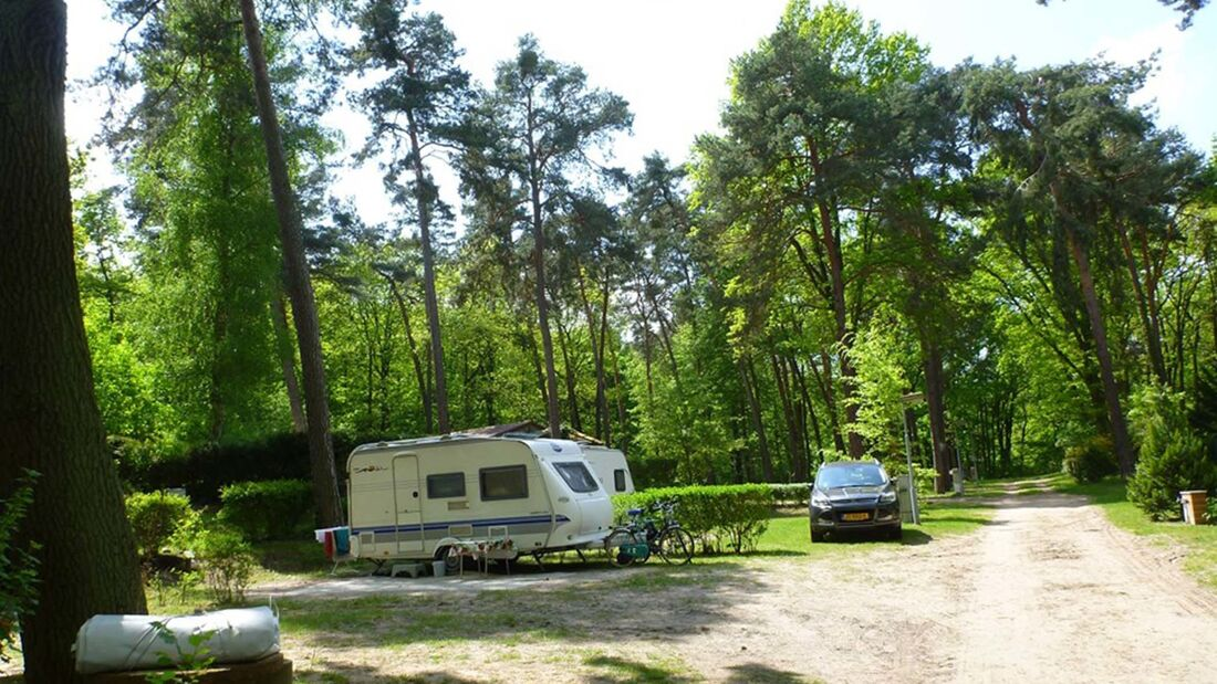 Schwielowsee Camping
