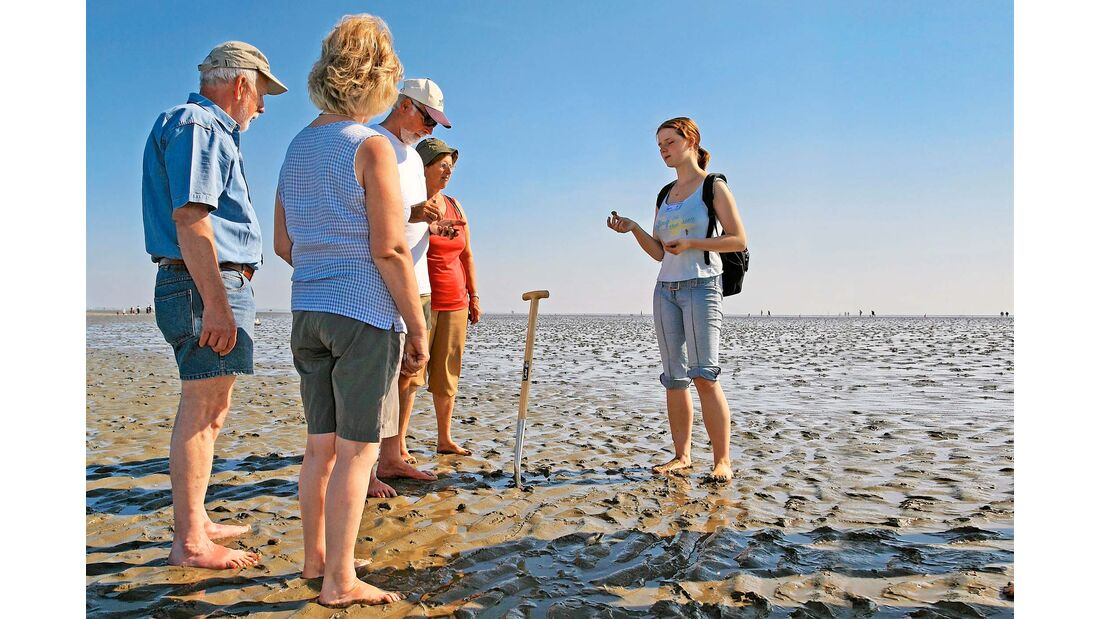 Wattwandern auf dem Wattenmeer